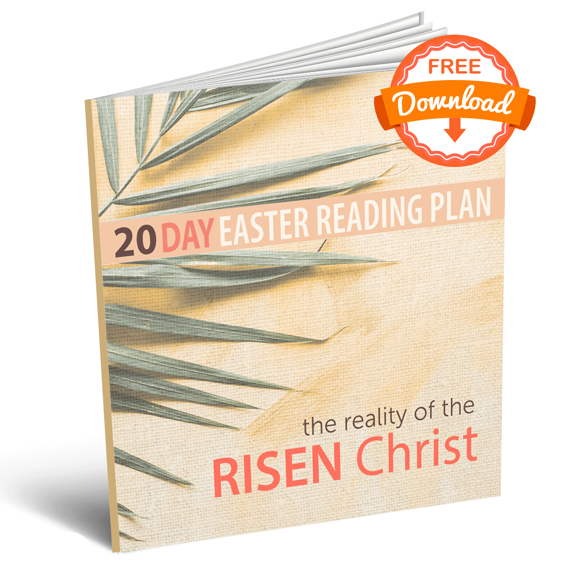 The Reality of the Risen Christ Reading Plan